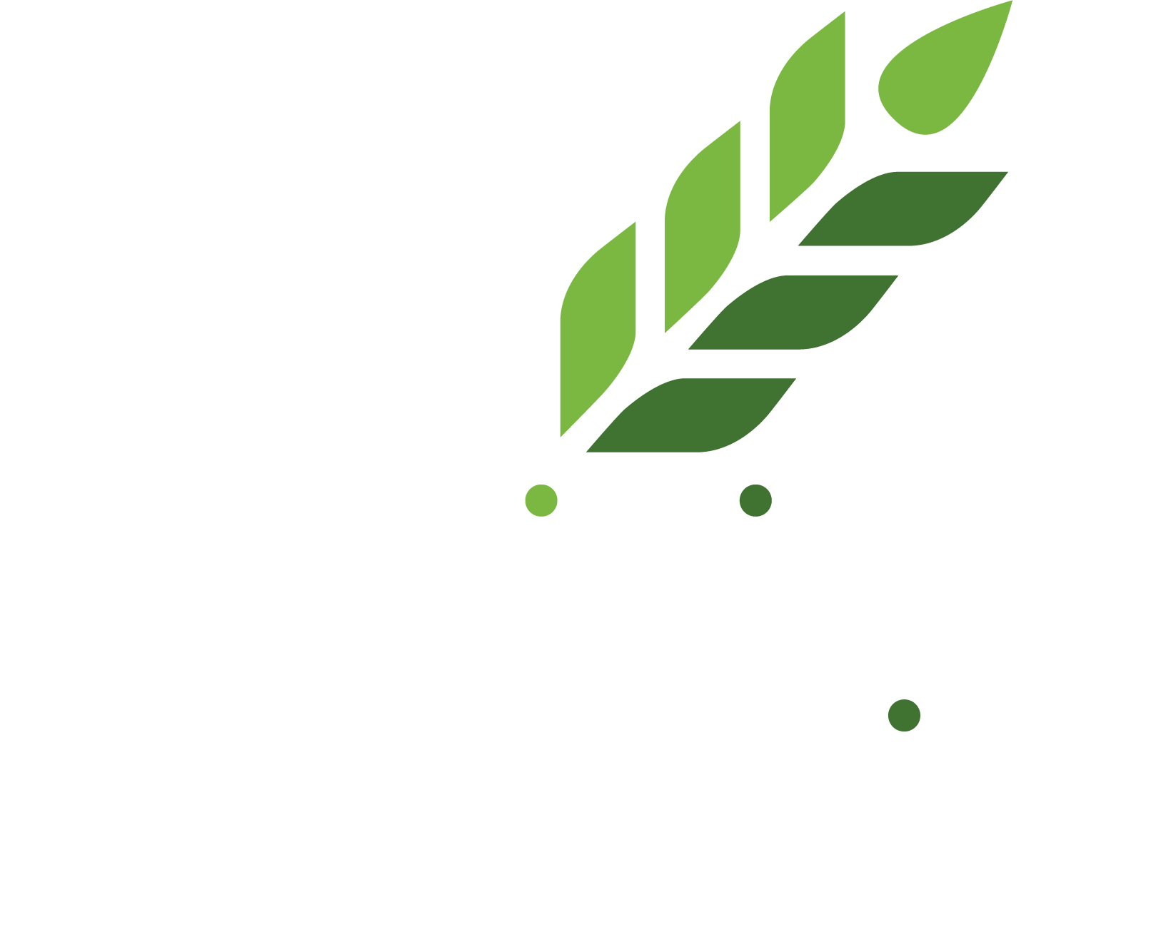 100% organic improvers and fertilizers for sandy soils of Middle East, North Africa and Asia.  Organic fertilizers for farming, landscaping, urban greenery, flower-growing, gardening.